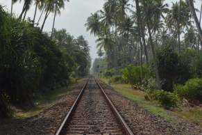 Train travel in Sri Lanka is one of the best ways to see this beautiful country