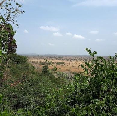 Anja's Medical Internship in Ghana (15)