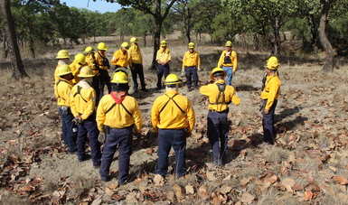 Mexico sends firefighters to help with wildfire in Alberta ...