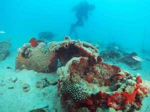 Diving Belitung Indonésie Go Belitung