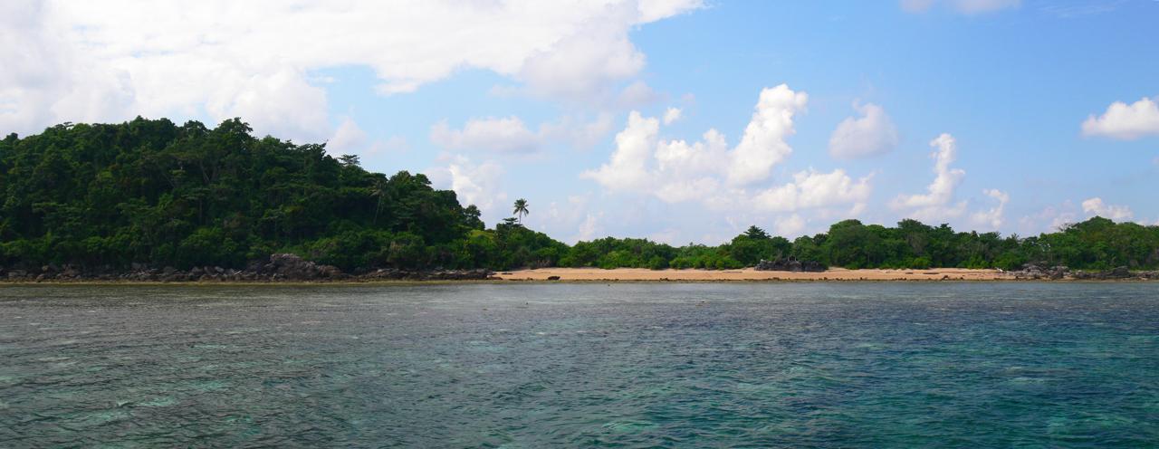 konservasi penyu Belitung GoBelitung Indonesia