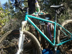 Abbey custom steel 29er at the Gnome Shrine at Elv trail.