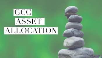 The 2019 GCC Asset Allocation - Go Curry Cracker!