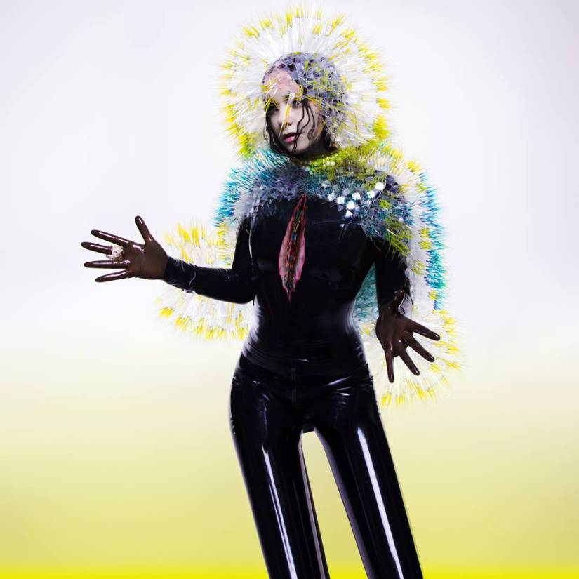 Bjork  – Vulnicura (One Little Indian)