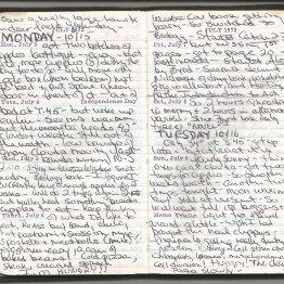 Journal-3