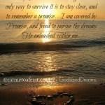 A Promise…