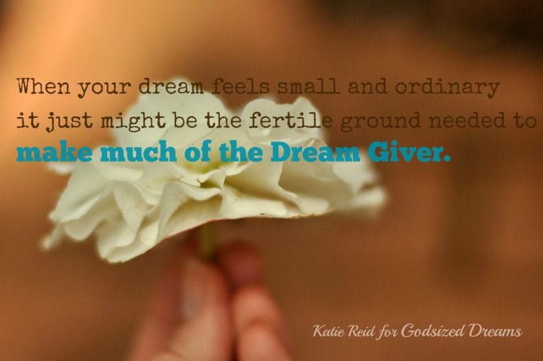 When Your Dreams Feel Small and Ordinary by Katie Reid for Godsized Dreams