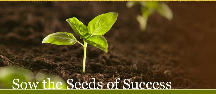 sowseedsofsuccessinside