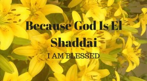 Yellow lillies with text Because God is El Shaddai, I am Blessed