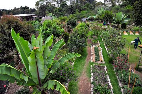 Jardín botánico en Bogotá