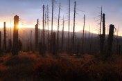 Morning at Blatny mountain
