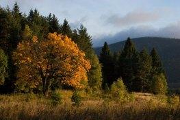 Kremelna mountain