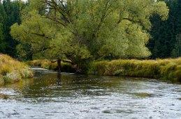 Tepla Vltava river