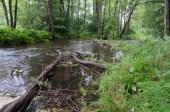 Spulka river