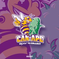 CAN-APE