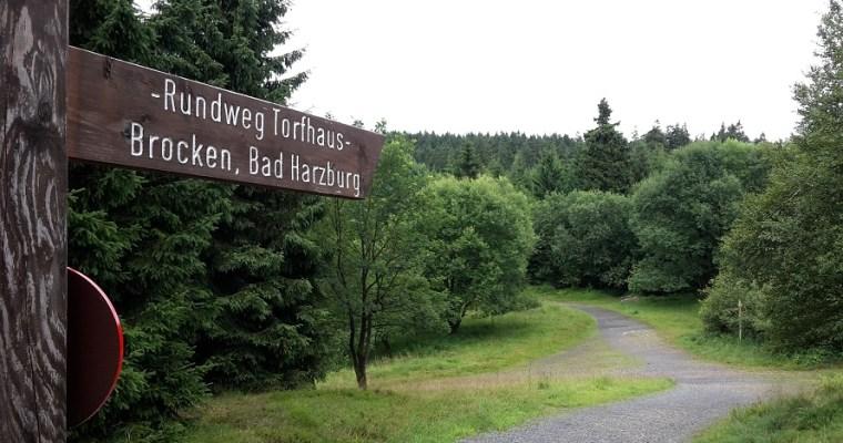 Wandern im Harz: Drei Wandertouren für Anfänger