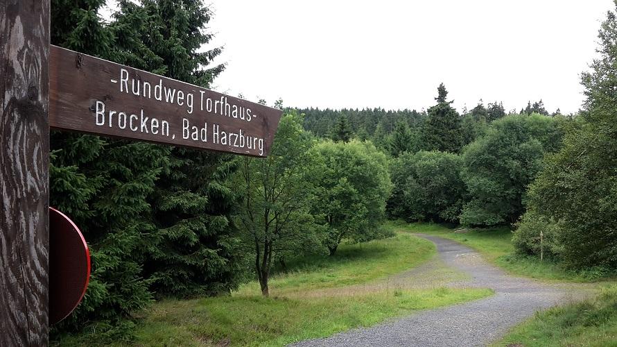 Wandern im Harz für Einsteiger