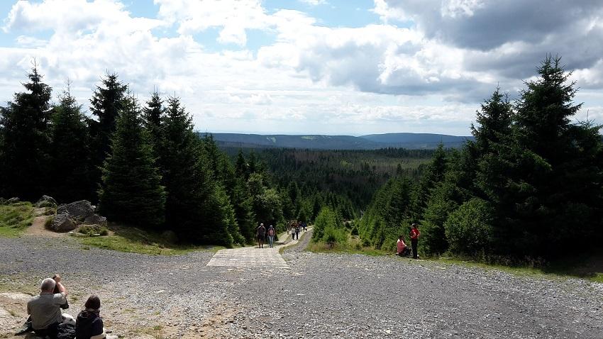 Kolonnenweg Harzer Grenzweg
