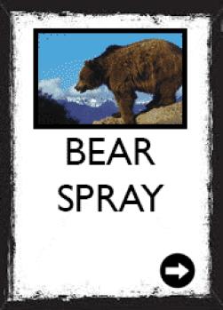 bear prsy, bear, grizzly bear, bear country, rental, for sale, west glacier, glacier national park, apgar village, lake mcdonald, for rent, for hire, service