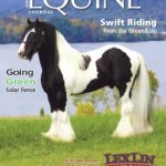 3EquineJournalCover_LexLinGypsyRanch
