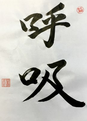 What is Meiso ho and Kokyu ho?