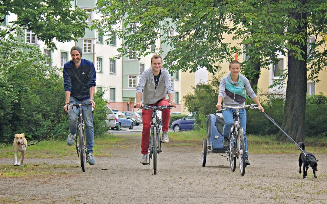 Eike Bösing, Markus Hörold und Dorothee Zickermann vom Streetwork Team Nord