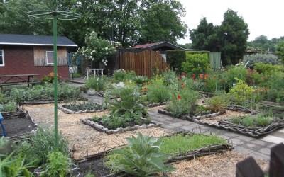Ein Kräutergarten in Westgohlis