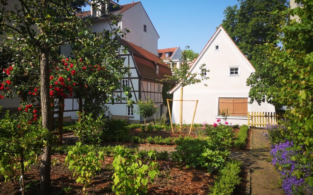 Gartenparadies, Ferienspaß und Nachbarschaftspflege – Das Jahr 2019 im Schillerhaus