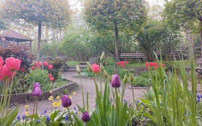 Aus dem Skulpturengarten wird der Kunstgarten