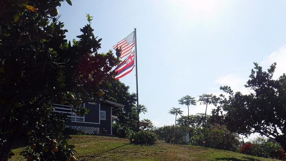 Image Result For Greenwell Coffee Farm Kona