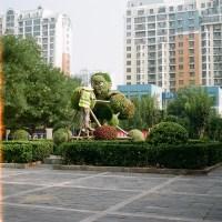 Beijing Topiary