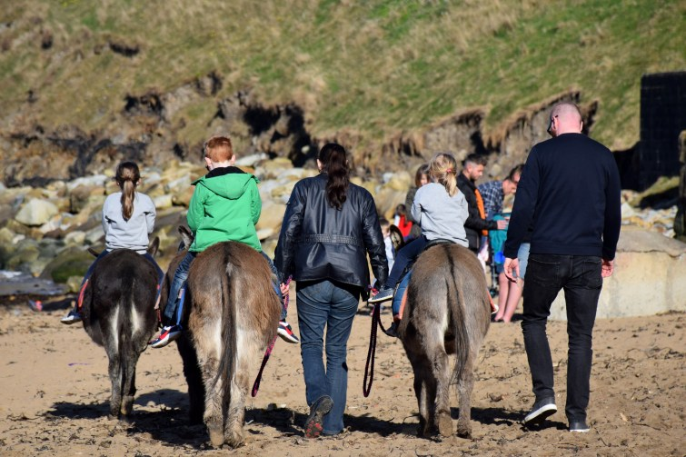 Donkey rides on the beach in Whitby