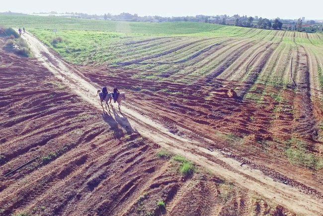 היזהרו בקניית קרקעות