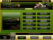 gaming club gokkasten