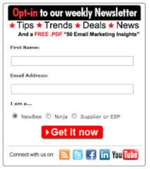 email opt-in list