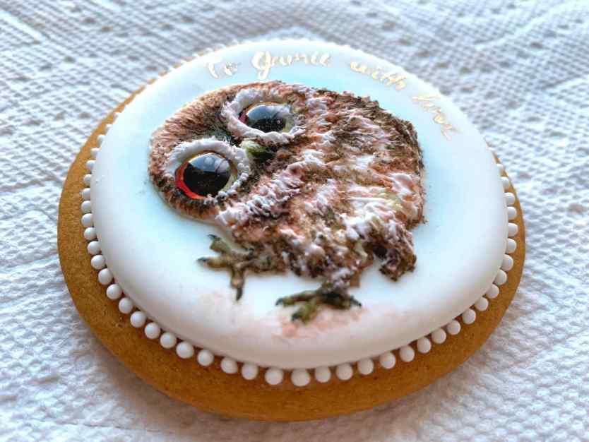 Eine Eule gemalt auf einem Keks