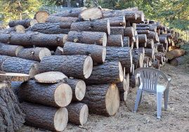 firewood cut and stacked and ready for splitter