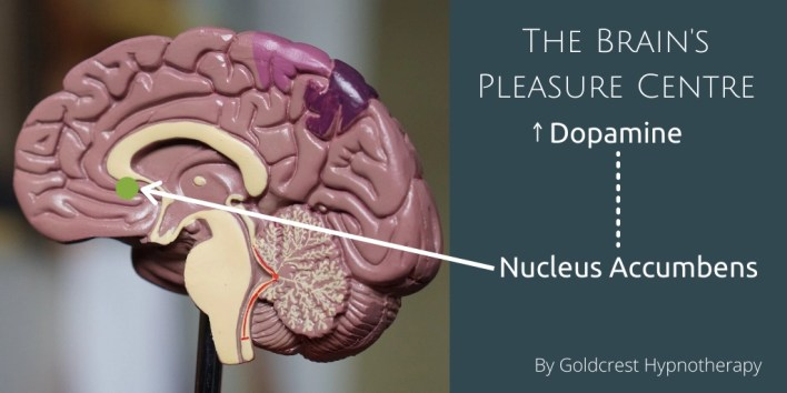 brain pleasure centre hypnosis help with addictions hijacked brain