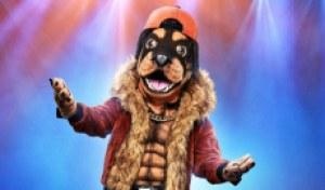 'The Masked Singer' final 6 power rankings: Rottweiler, Tree and Flamingo are the ones to beat