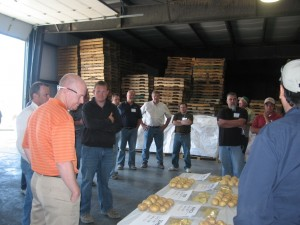 Our visitors inspect our chipping potato samples during the packing shed tour