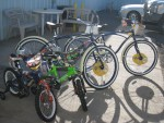 Bicycles bought with money raised by Gold Dust and Walker Brothers employees