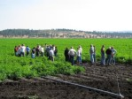 A group of visitors gets tour of chipping potato field at Running Y Ranch.