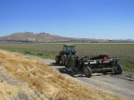 A chipping potato field in the Tule Lake Wildlife Refuge about to be harvested.
