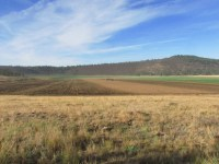 "The ""Elk Field"" on the Running Y Ranch before a day of digging chipping potatoes begins."