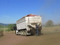 Doug Lewis tarps a loaded potato truck before it leaves the Running Y Ranch.