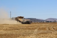 Claas Lexion 740 cutting organic rye near Malin, Oregon.
