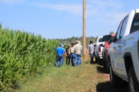 Gold Dust Potato Processors' guests stop and look at the organic corn field they're growing on the Running Y Ranch.