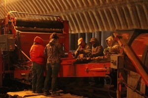 Walker Farms' seed crew cutting chipping potato seed in a cellar on Gold Dust Potato Processors' Malin, OR campus.