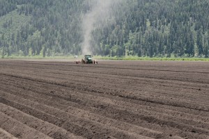 A tractor creates furrows for a planted chipping potato field on the Running Y Ranch outside of Klamath Falls, Oregon.