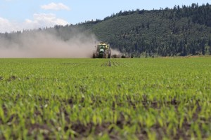 A tractor plants grain in a field at the Running Y Ranch outside of Klamath Fall, Oregon.